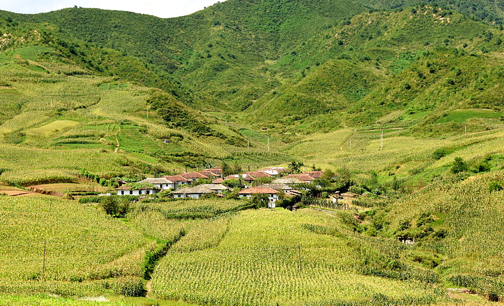 Village amid corn fields near Chongjin, Hamgyong Province, North Korea