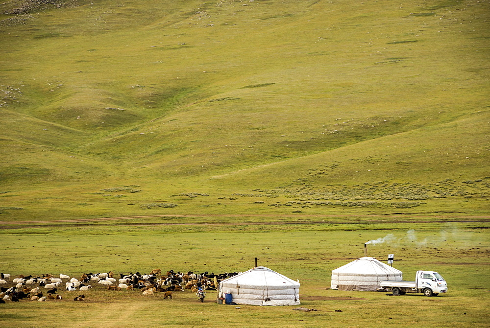 Nomadic herders' ger camp on Steppes grasslands of Mongolia, Asia - 29-5517
