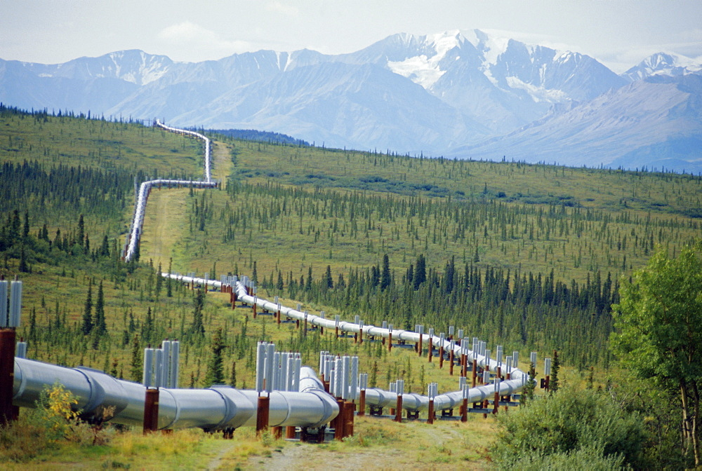 The Trans Alaska Oil Pipeline running on refridgerated support to stop oil heat melting the permafrost,Mount Hayes (4116m) and the Alaska Range in the background, Alaska, USA