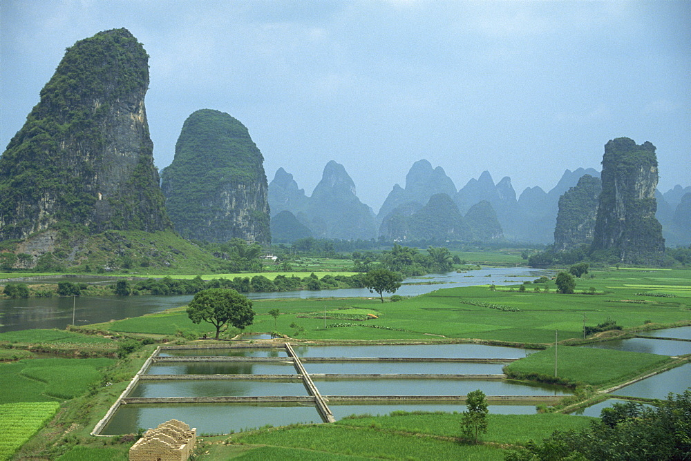 Landscape of rice paddies, fish farms and limestone pinnacles in the Fenglin Karst south of Guilin, Yangshuo, Guangxi, China, Asia