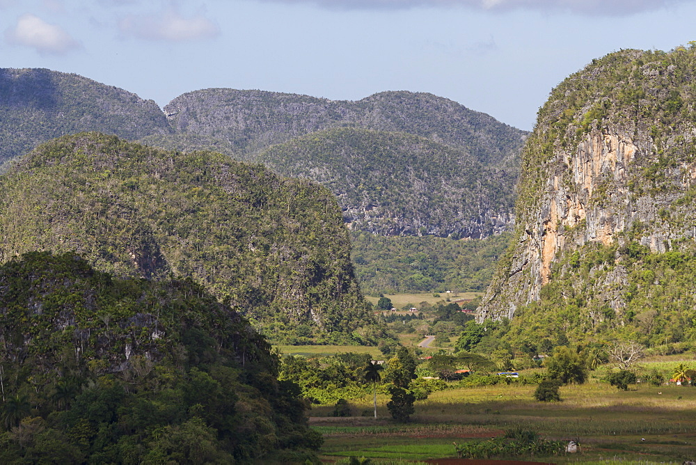 Limestone Mogotes, Vinales Valley, UNESCO World Heritage Site, Pinar del Rio, Cuba, West Indies, Caribbean, Central America