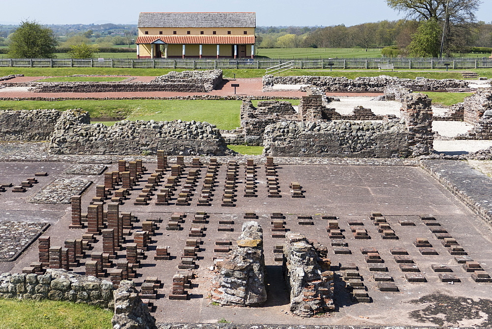 Old Roman city, Wroxeter, Shropshire, England, United Kingdom, Europe - 306-4353