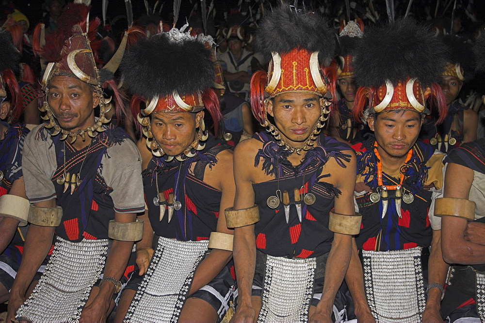 Naga men at Grand Finale (tribal dancing) in headdresses of woven cane decorated with wild boar teeth and bear fur topped with a hornbill feather, with tiger claw straps, wearing tiger teeth necklaces, heirloom ivory armbands and aprons decoratated with cowrie shells, Lahe village, Naga New Year Festival, Sagaing Division, Myanmar (Burma), Asia