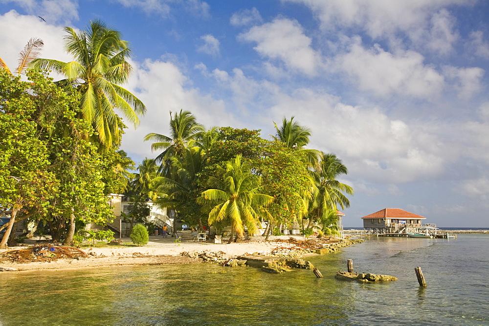Tobaco Caye, Belize, Central America