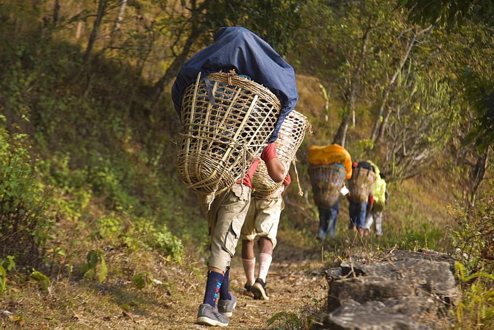 Porters on Royal trek, Pokhara, Nepal, Asia