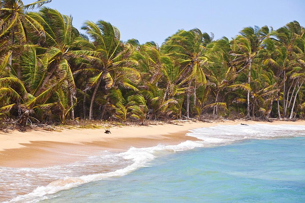 Beach near Garret Point, Little Corn Island, Corn Islands, Nicaragua, Central America