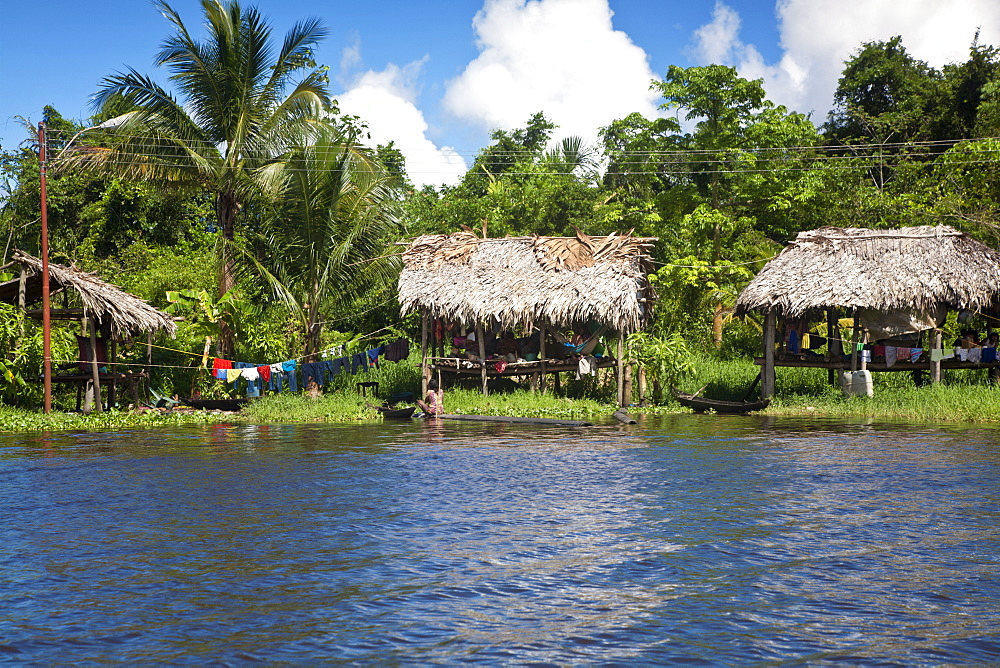 Warao Indian hatched-roof huts built upon stilts, Delta Amacuro, Orinoco Delta, Venezuela, South America