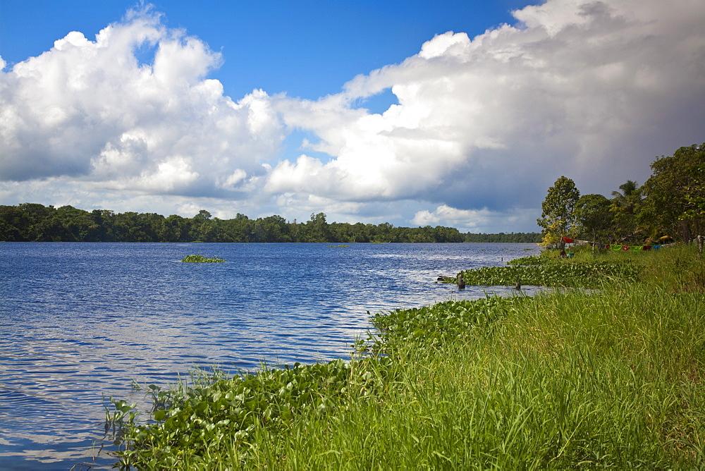 Yavinoco Village, River Manamo, Delta Amacuro, Orinoco Delta, Venezuela, South America