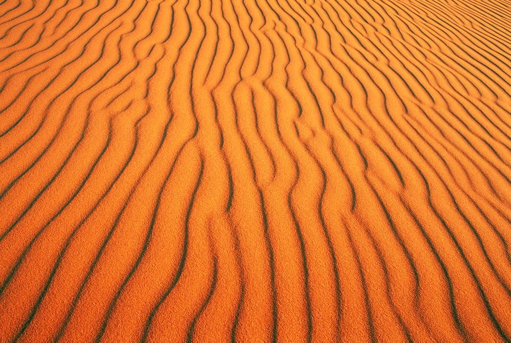Patterns in sand dunes in Erg Chebbi sand sea, Sahara Desert, near Merzouga, Morocco, North Africa, Africa