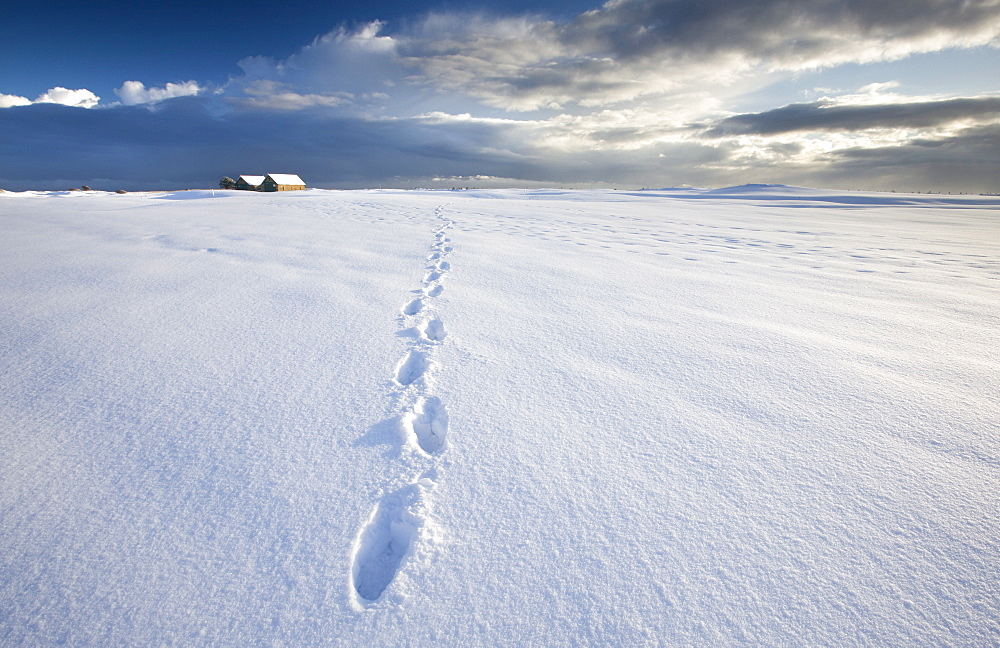 Footsteps in freshly-fallen snow leading off into distance towards dramatic winter sky, Alnmouth, near Alnwick, Northumberland, England, United Kingdom, Europe - 321-4586