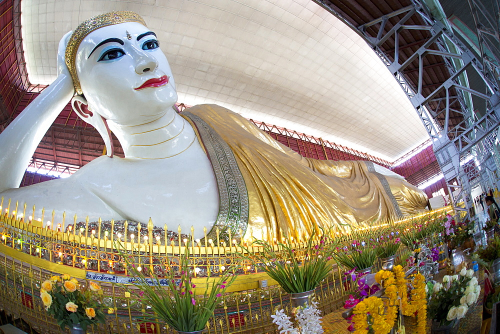 The 70m long Chaukhtatgyi Reclining Buddha at Chaukhtatgyi Paya, Yangon (Rangoon), Myanmar (Burma), Asia  - 321-5040