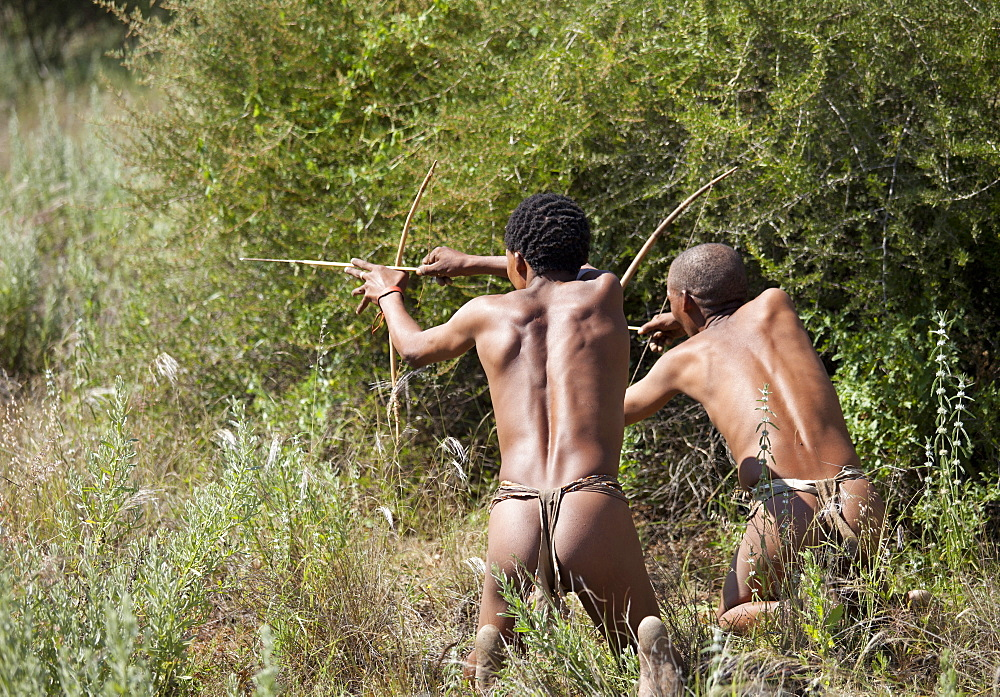 San (Bushmen) demonstrating traditional hunting technique with bow and arrow at the Okahandja Cultural Village, near Okahandja town, Namibia