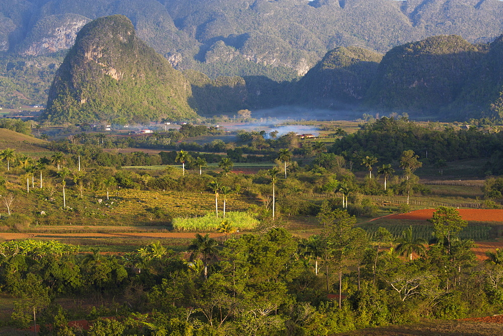 Vinales Valley, UNESCO World Heritage Site, bathed in early morning sunlight, Vinales, Pinar Del Rio Province, Cuba, West Indies, Central America