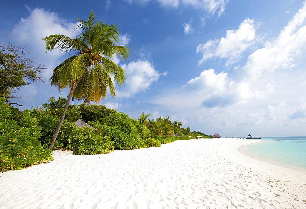 View along tropical beach, Coco Palm resort, Dhuni Kolhu, Baa Atoll, Republic of Maldives, Indian Ocean, Asia