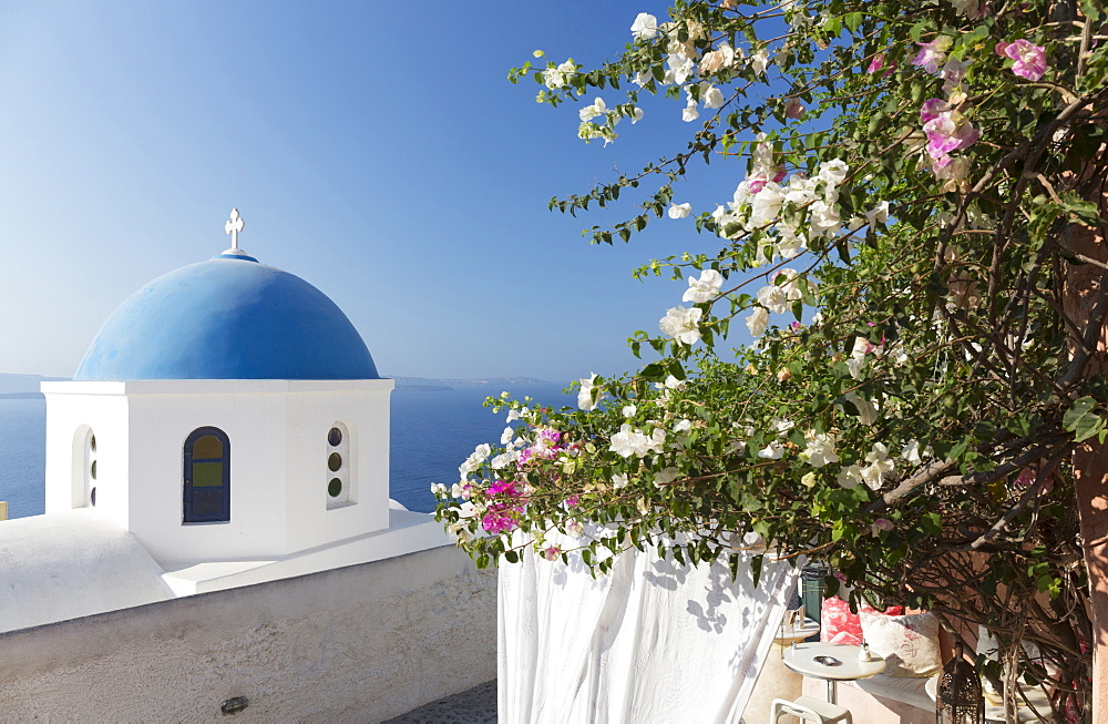 White church with blue dome and flowers, Oia, Santorini, Cyclades, Greece