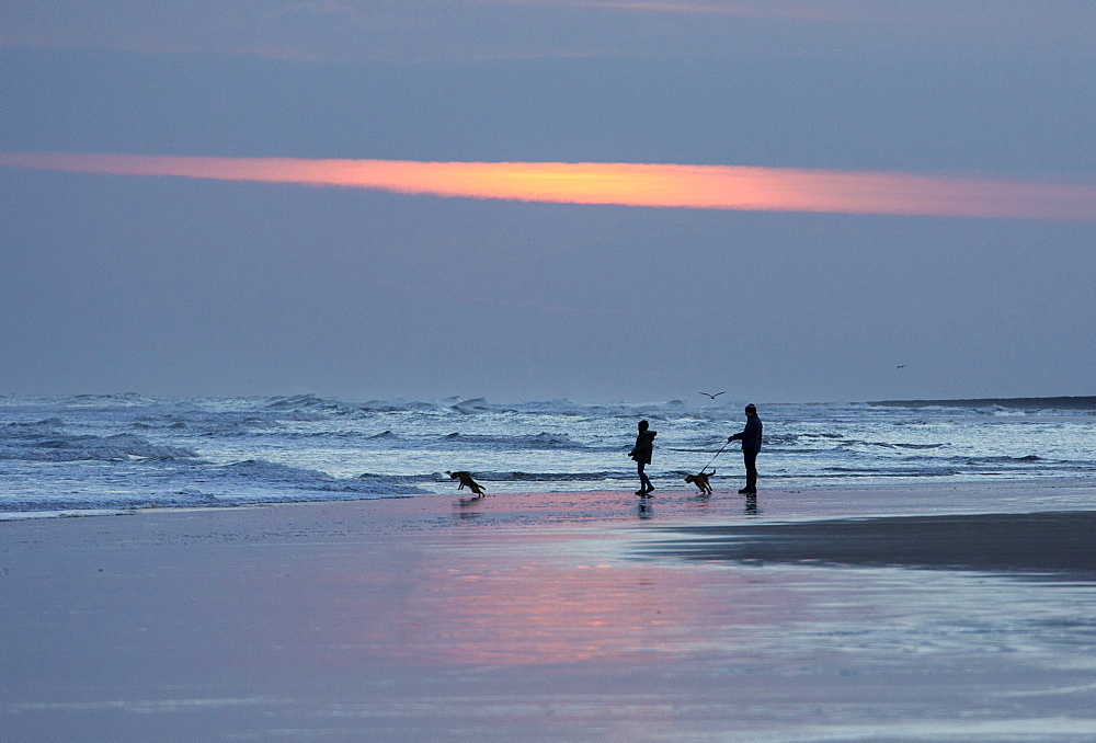 Dog walkers in silhouette on Bamburgh Beach at sunrise, Bamburgh, Northumberland, England