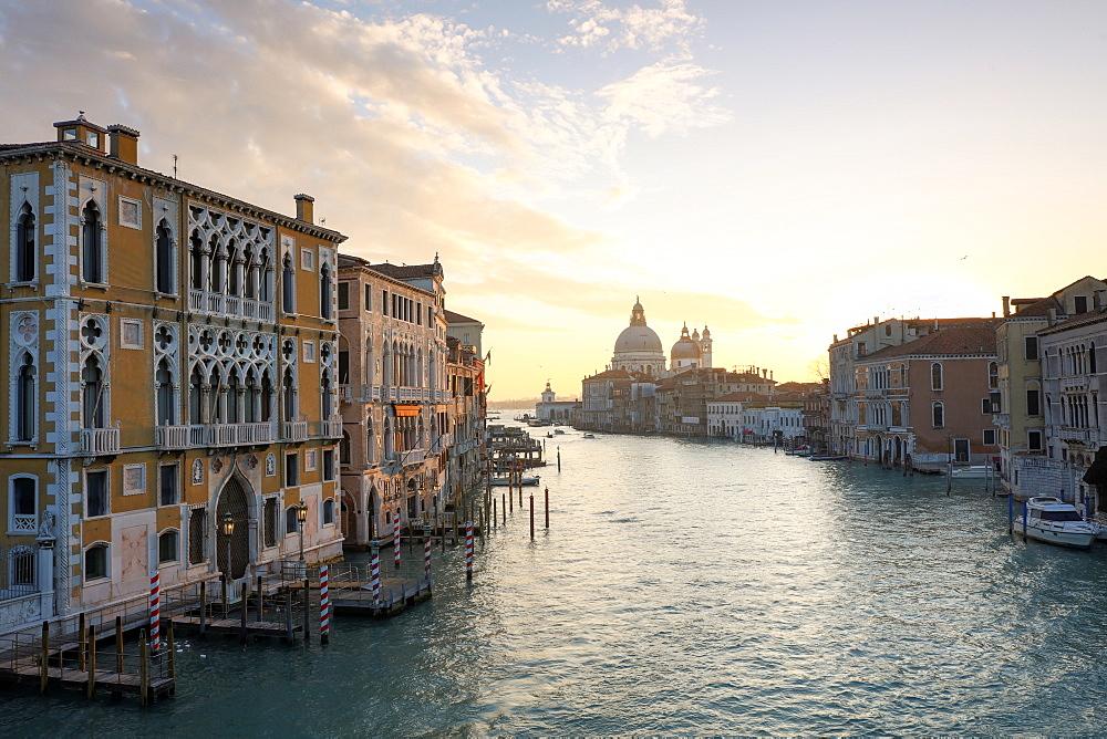 View along Grand Canal towards Santa Maria Della Salute from Accademia Bridge at sunrise, Venice, Italy