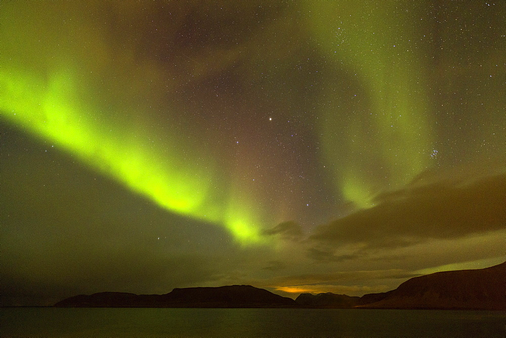 Aurora Borealis (Northern Lights), Grundafjordur, Snaefellsnes Peninsula, Iceland, Polar Regions