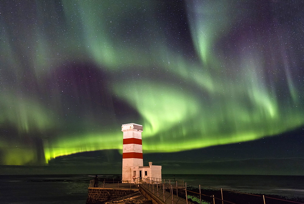 Spectacular display of the Aurora Borealis (Northern Lights) at Gardur, on the Reykjanes Peninsula, Iceland, Polar Regions