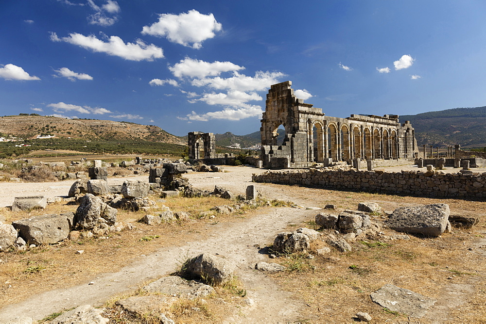 The Basilica at the Roman city of Volubilis, UNESCO World Heritage Site, near Moulay Idris, Meknes, Morocco, North Africa, Africa - 321-5905