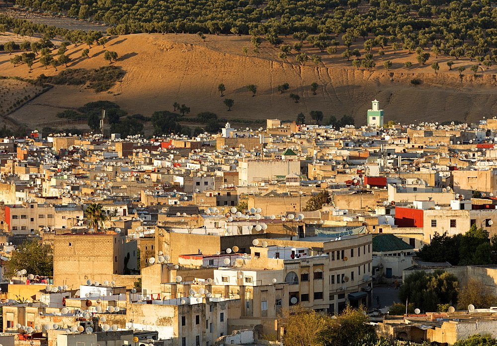 Medina of Fez bathed in evening light, UNESCO World Heritage Site, Fez, Morocco, North Africa, Africa - 321-5907