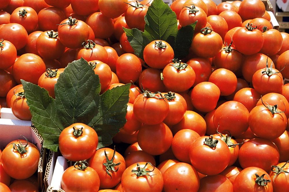 Tomatoes on market stall, Kingston-upon-thames, Surrey, England, United Kingdom, Europe