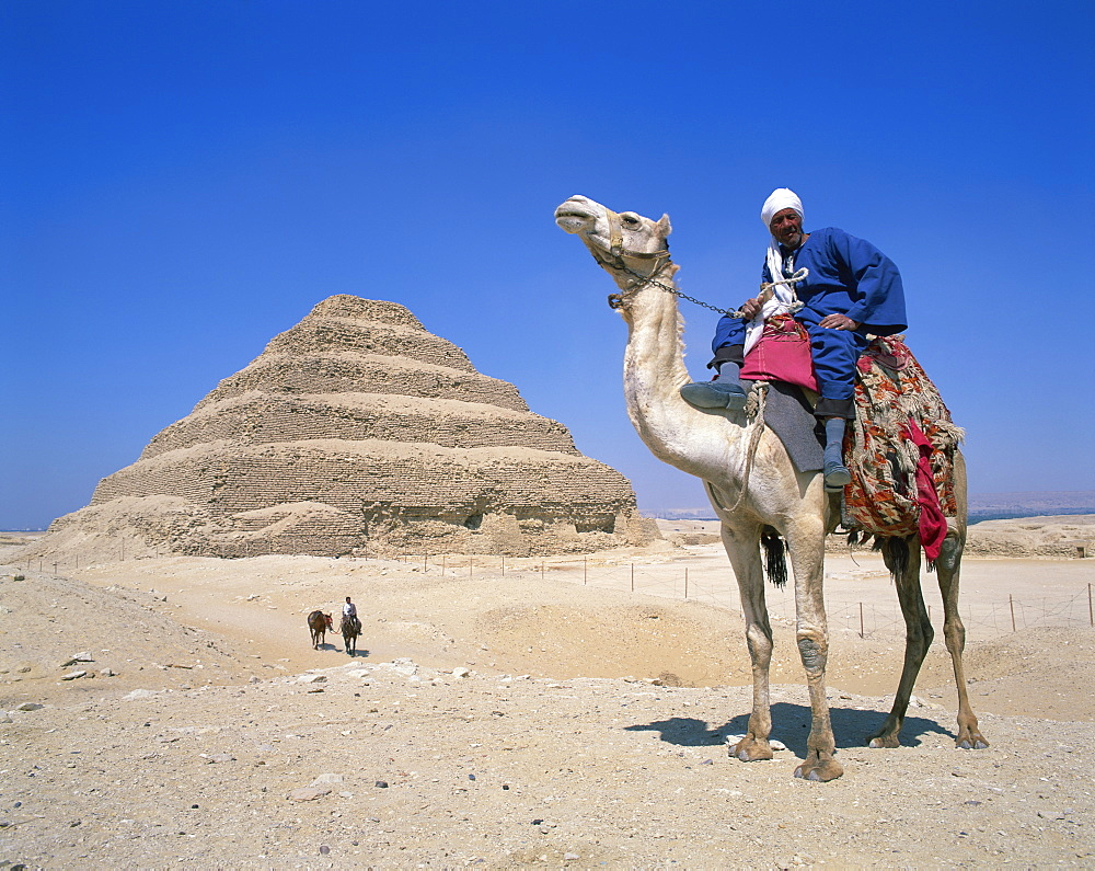 Guide on camel in front of the Step Pyramid of the pharaoh Zoser at Saqqara (Sakkara), UNESCO World Heritage Site, Egypt, North Africa, Africa