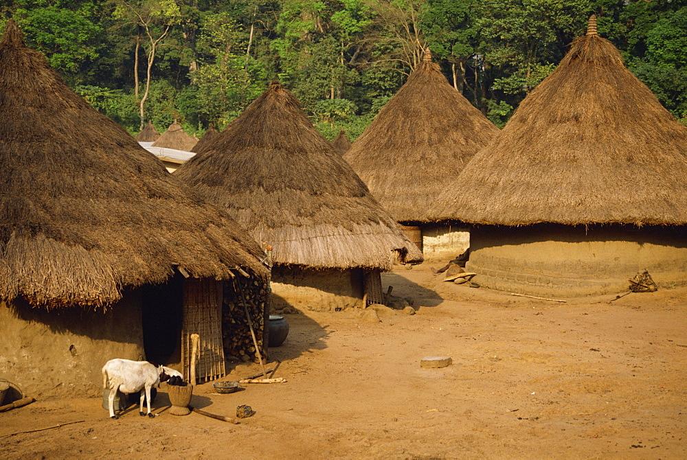 Village scene, Ivory Coast, West Africa, Africa