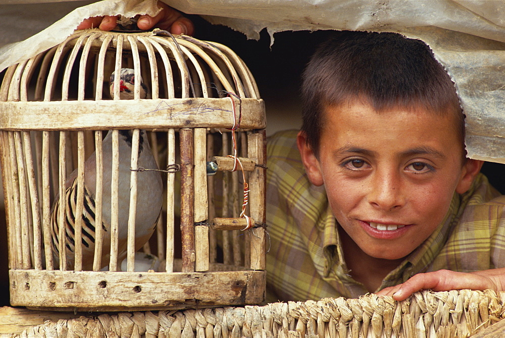 Gypsy boy and caged bird, near Pitara, south west area, Anatolia, Turkey, Asia Minor, Eurasia - 358-368
