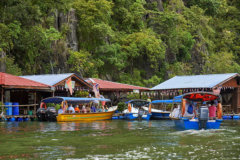 Mangrove safari boats stop for tourists to visit a fish farm and handle horseshoe crabs, Langkawi, Malaysia, Southeast Asia, Asia - 358-590