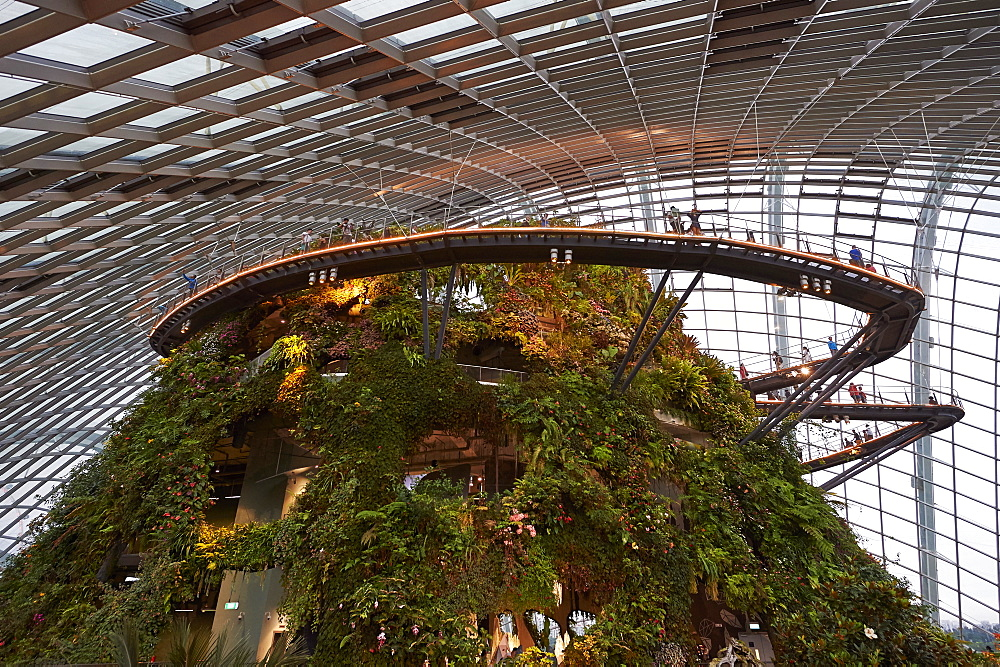 Inside the Cloud Forest biosphere at Gardens by the Bay, Singapore, Southeast Asia, Asia