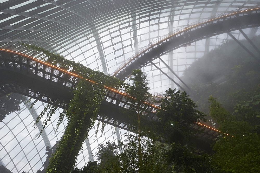 Inside the Cloud Forest biosphere at Gardens by the Bay, Singapore, Southeast Asia, Asia - 358-596