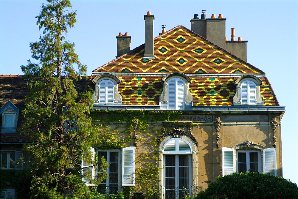 France, Cote d'Or, Dijon, house with traditional Burgundian tiled roof