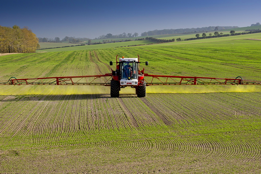 An agricultural machine spraying chemicals in Hertfordshire, England, United Kingdom, Europe