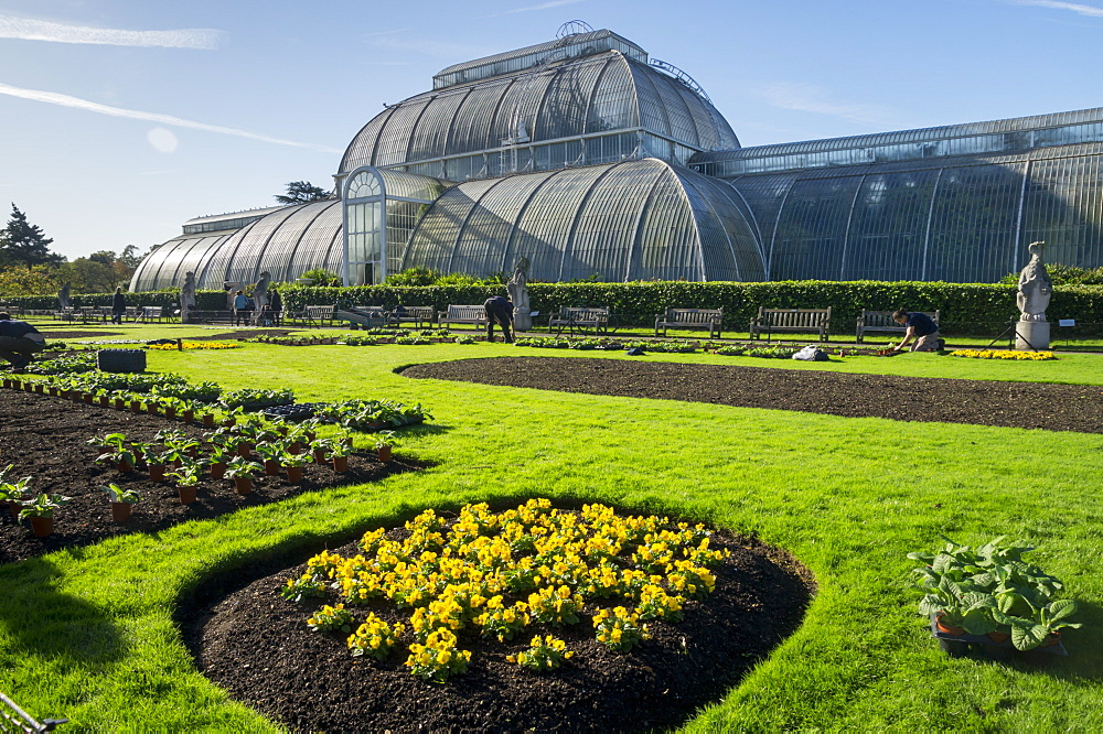Kew Gardens Palm House with newly planted spring flowers, Royal Botanic Gardens, UNESCO World Heritage Site, Kew, London, England, United Kingdom, Europe
