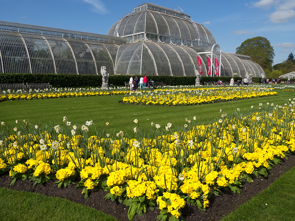Palm House in spring, Royal Botanic Gardens, UNESCO World Heritage Site, Kew, London, England, United Kingdom, Europe