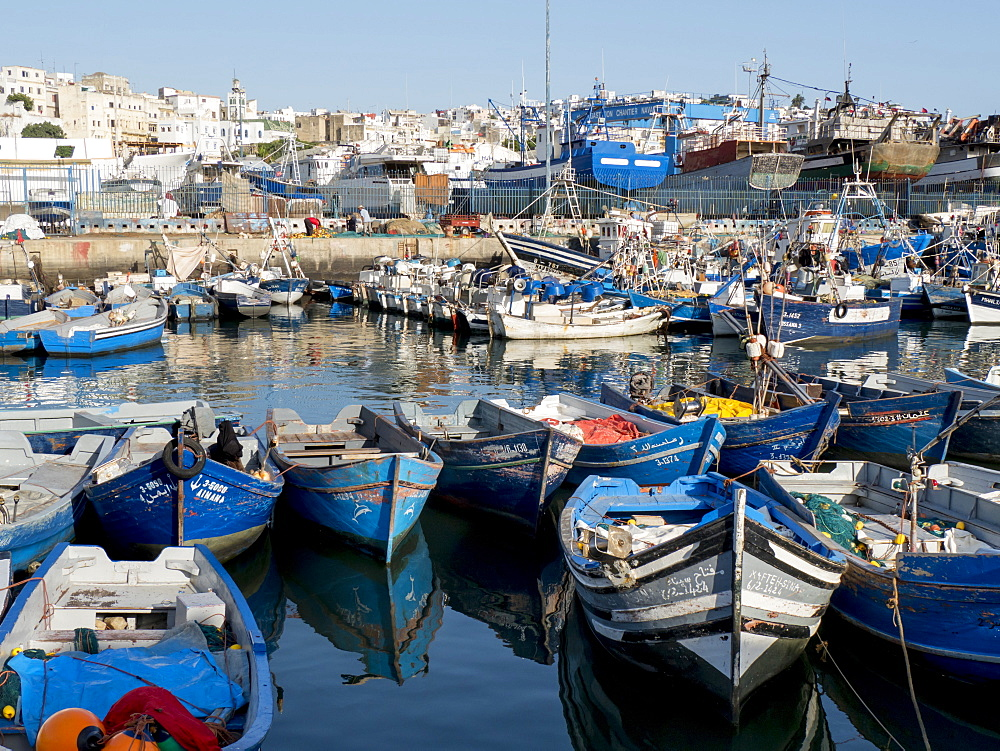 Fishing boats in port, Tangier, Morocco, North Africa, Africa - 367-6047