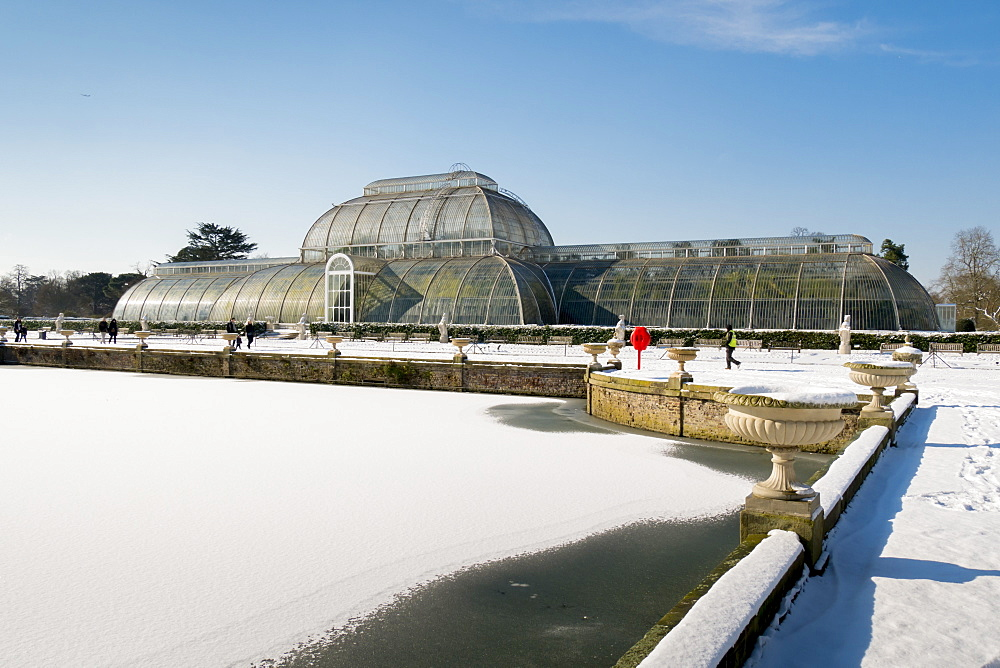 Palm House in winter, Kew Gardens, UNESCO World Heritage Site, London, England, United Kingdom, Europe - 367-6181