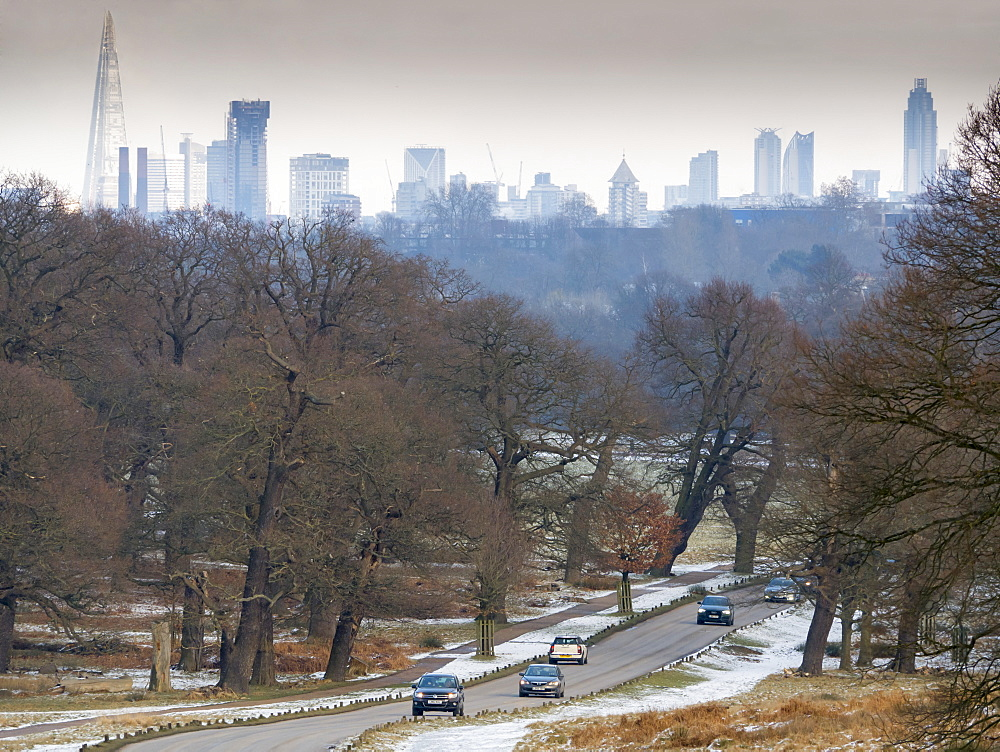 City skyline from Richmond Park, London, England, United Kingdom, Europe - 367-6183