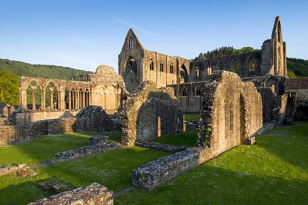 Tintern Abbey ruins, Monmouthshire, Wales, United Kingdom, Europe - 367-6200