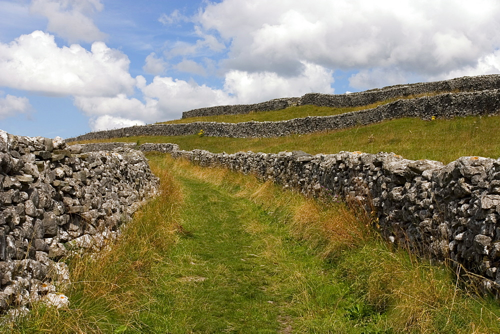 Footpath on the Dales Way, Grassington, Yorkshire Dales National Park, North Yorkshire, England, United Kingdom, Europe - 375-786