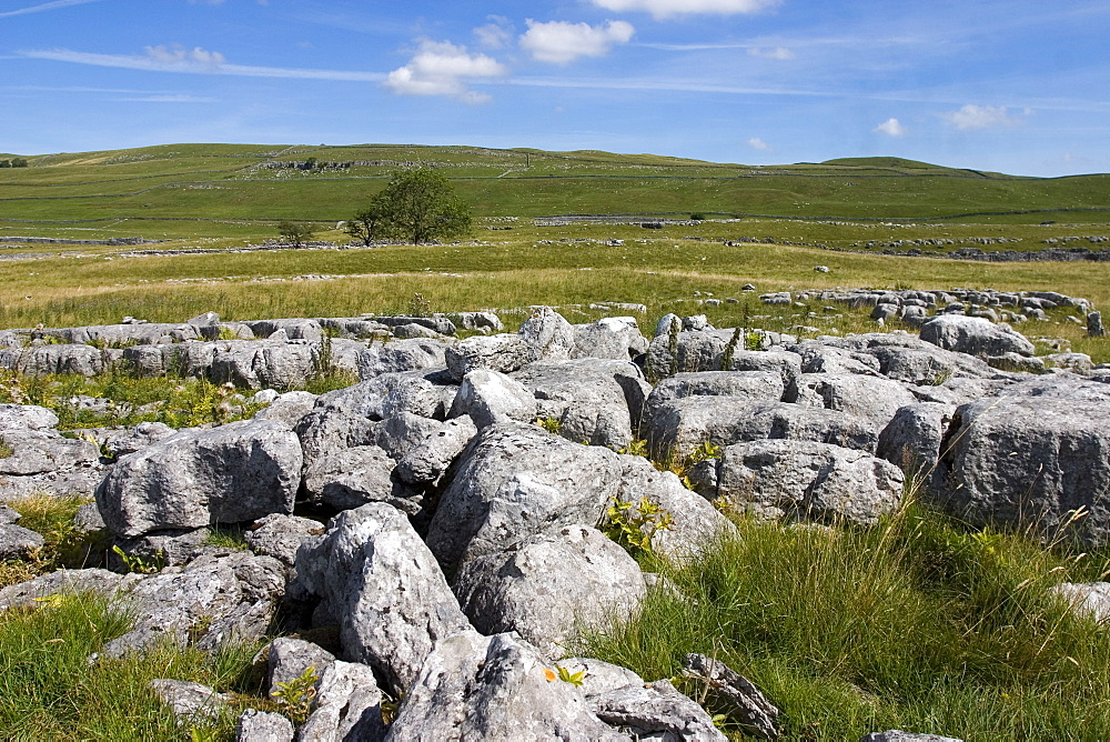 Limestone pavement at Lea Green, Grassington, Yorkshire Dales National Park, North Yorkshire, England, United Kingdom, Europe - 375-791