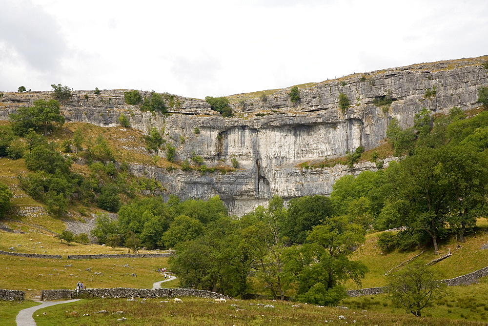 Malham Cove, Malham, Yorkshire Dales National Park, North Yorkshire, England, United Kingdom, Europe - 375-797