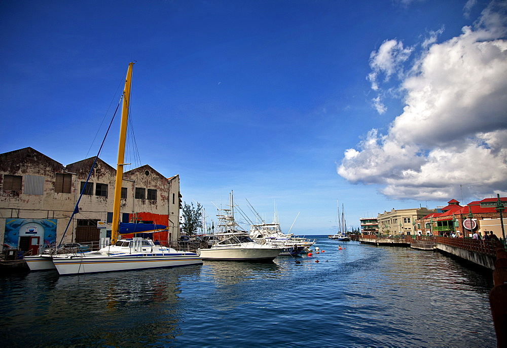 Docked yachts and sailboats at the Careenage marina, Bridgetown, Barbados, West Indies, Caribbean, Central America