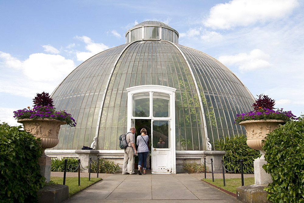 Palm House Dome, Royal Botanic Gardens, UNESCO World Heritage Site, Kew, near Richmond, Surrey, England, United Kingdom, Europe - 377-3903