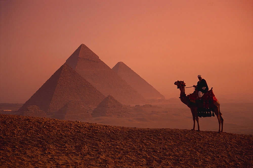Camel and rider at Giza Pyramids, UNESCO World Heritage Site, Giza, Cairo, Egypt, North Africa, Africa