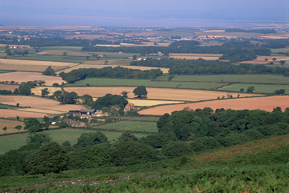 North Somerset and the Bristol Channel in the distance, from the Quantocks, Somerset, England, United Kingdom, Europe