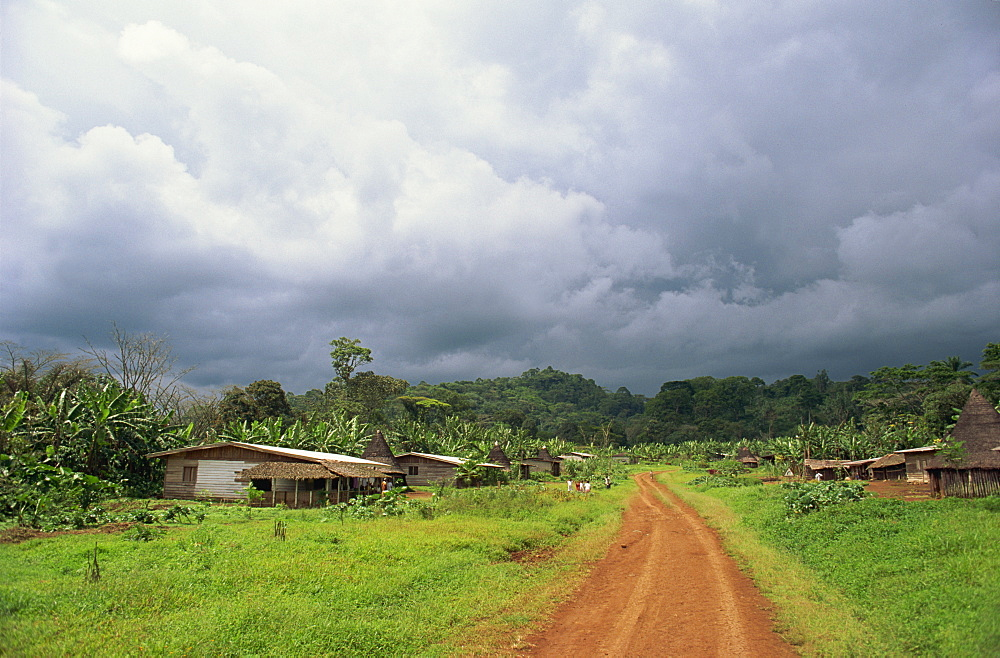 Typical village in western Cameroon, Africa - 382-226