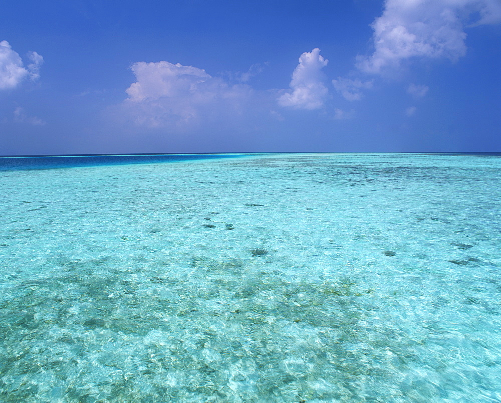 Tropical turquoise sea and blue sky in the Republic of the Maldives, Indian Ocean, Asia - 383-1185