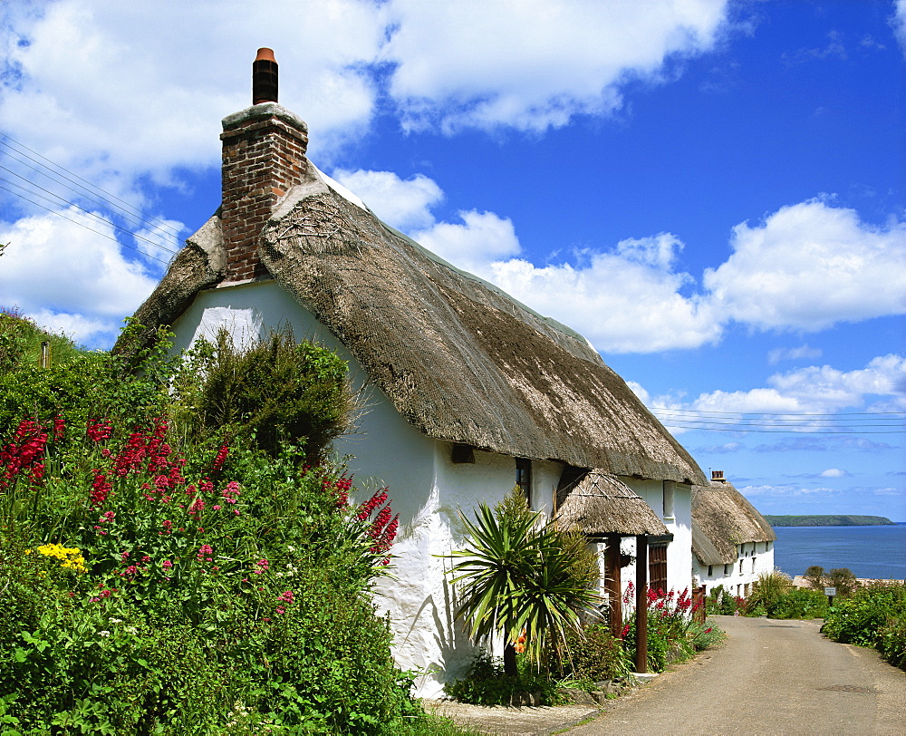 Thatched cottage on a village street in Cornwall, England, United Kingdom, Europe - 383-1633